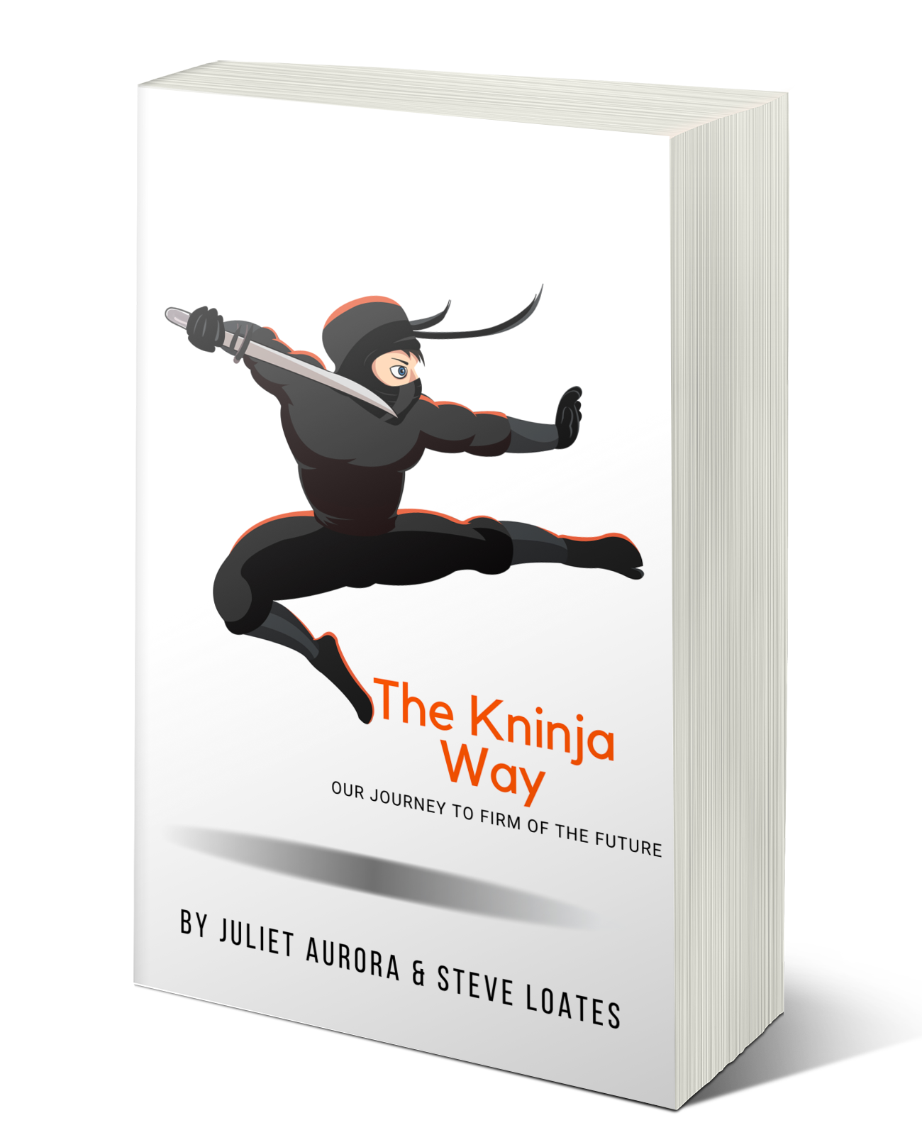 The Kninja Way Book Cover